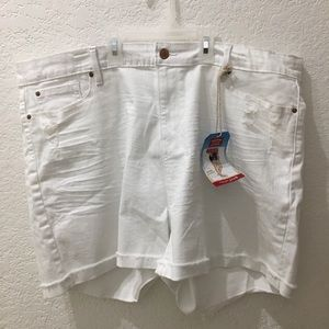 Signature by Levi white distressed shorts